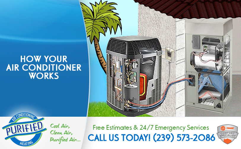 How Your Air Conditioner Works in and near Golden Gate Florida