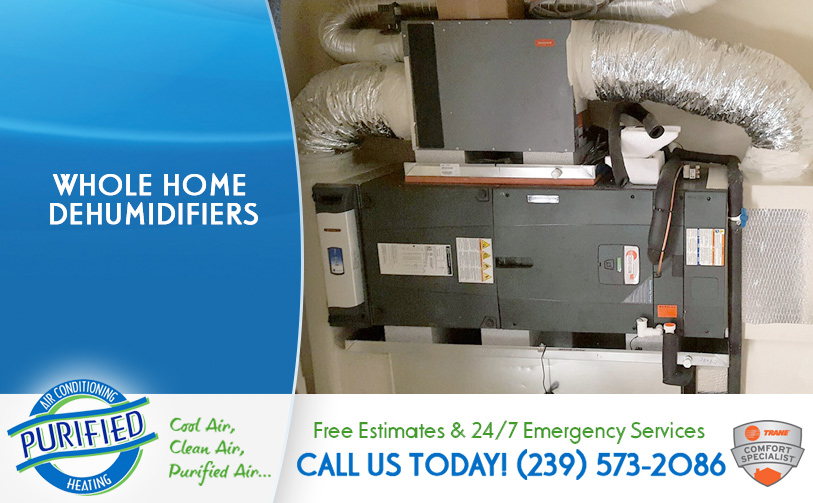 Whole Home Dehumidifiers in and near North Fort Myers Florida